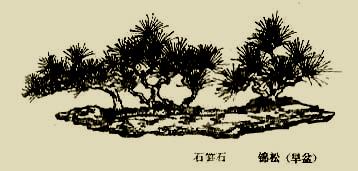 bz_0022.jpg